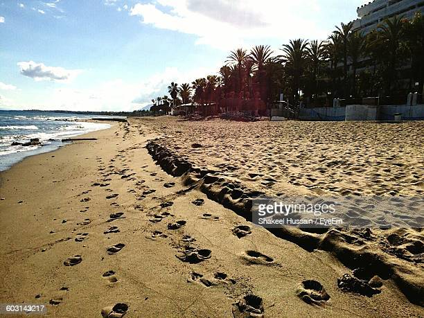 Footprints On Sand With Palm Trees At Beach