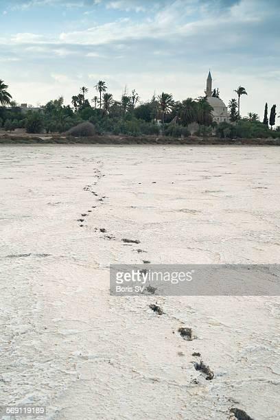 Footprints on the Salt Lake, Larnaca, Cyprus