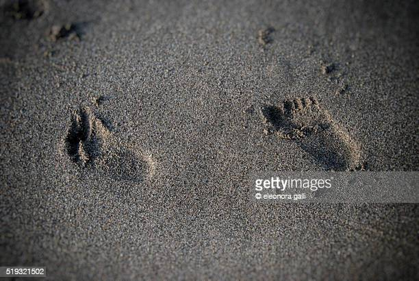 footprints on the sand of child