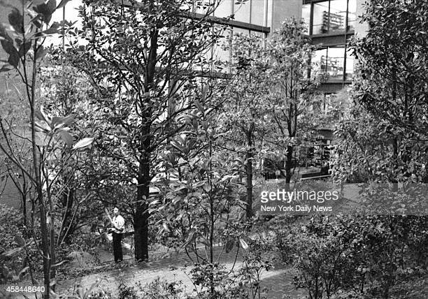 Ford Foundation Building and Garden 320 Easts 43rd Street NYC