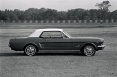 Ford Mustang Styling changes for '66 are so subtle that we just have to enumerate them — grill sidescoop ornament wheel covers and gas filler cap...