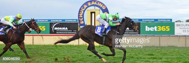 Foreign Affair ridden by Chris Symons wins the Border Inn Murray Mallee Winter Sprint Final at Echuca Racecourse on August 21 2017 in Echuca Australia