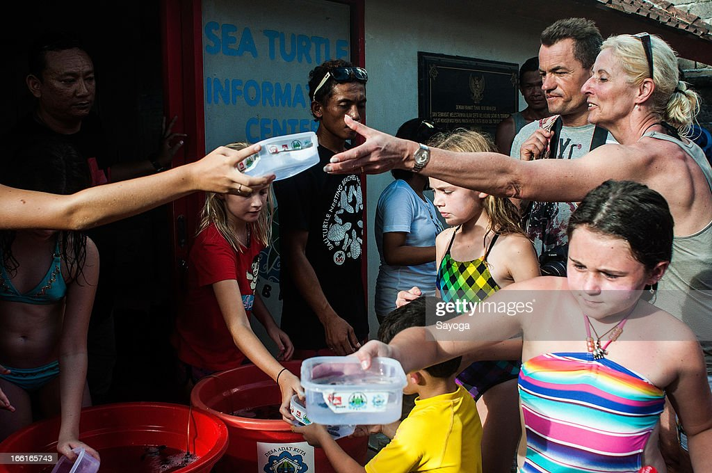 Foreign tourists are given the sea turtle hatchlings during a release program by the Bali Sea Turtle Society on April 9, 2013 in Kuta, Bali, Indonesia. The sea hatchlings release program is part of the turtle conservation effort which has been taking place at Kuta Beach since 2002.