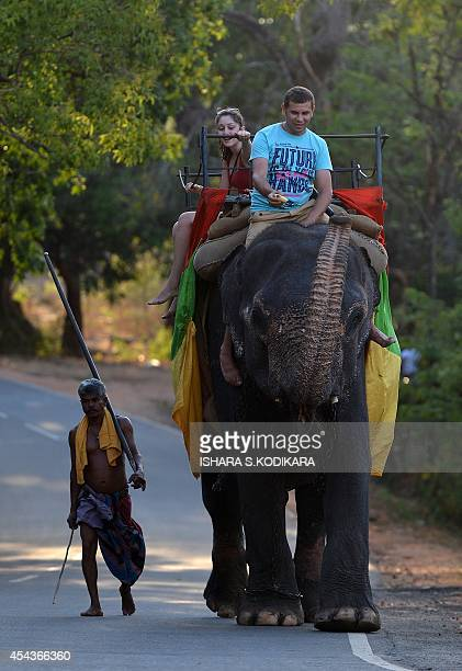 Foreign tourists ride an elephant during a sightseeing tour in the ancient Sri Lankan city of Sigiriya on August 29 2014 The number of foreign...