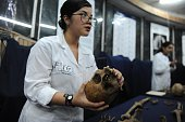 A Forensic Anthropology Association of Guatemala expert holds the skull of an identified victim of the Guatemalan civil war during the presentation...