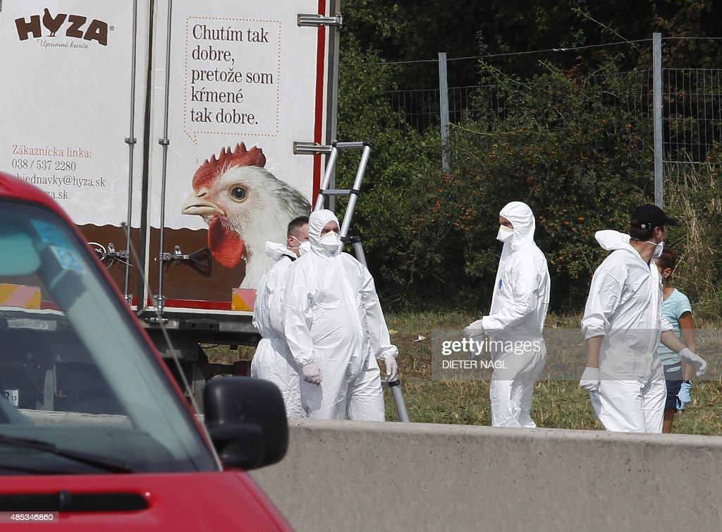 Forensic officers work at a truck inside which were found a large number of dead migrants on a motorway near Neusiedl am See Austria on August 27...