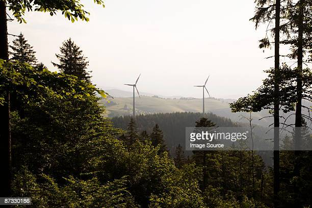 Forest and wind turbines
