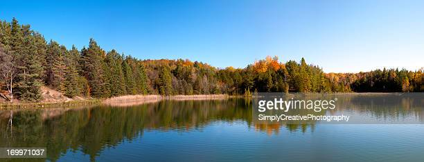Forest by Inland Lake in Fall