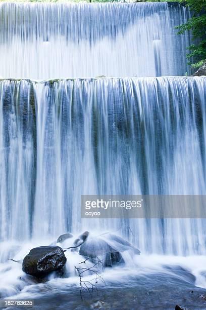 Forest Dam