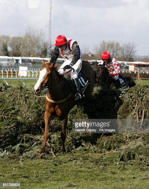 Forest Gunner and jockey Miss Nina Carberry in The JohnSmith's Grand National Steeple Chase