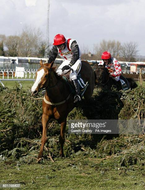 Forest Gunner and jockey Miss Nina Carberry jump the last fence during the John Smith's Grand National at Aintree racecourse Saturday April 8 2006