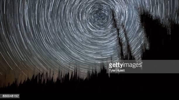 Forest in Oregon Night Sky Star Trails Over Oregon