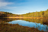 Forest lake landscape at autumn day in Finland