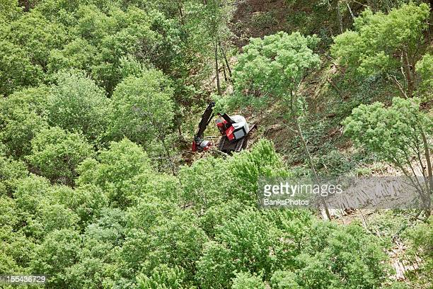 Forest Logging Feller Buncher Machine Cutting Trees Aerial View
