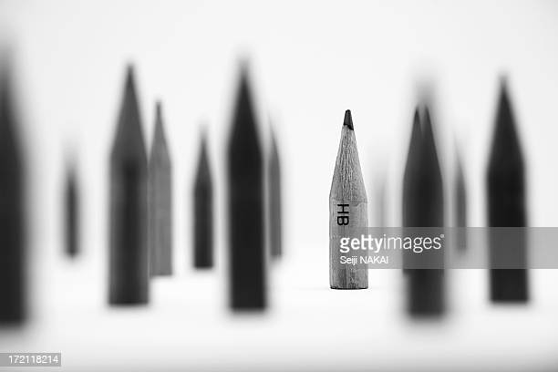 Forest of Pencil
