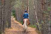 Horseback riding in forest path in autumn