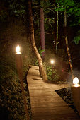 Walkway, evening, flames, wilderness