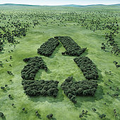 Forest shaped recycling symbol