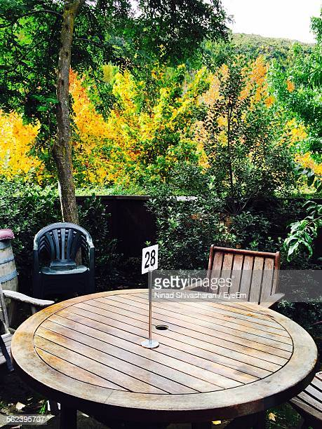 Forest With Wooden Round Table And Chair Setting In Lawn