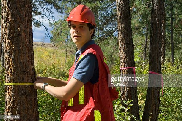 Forester or Arborist