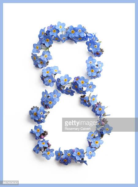 Forget-me-not flowers creating number eight.