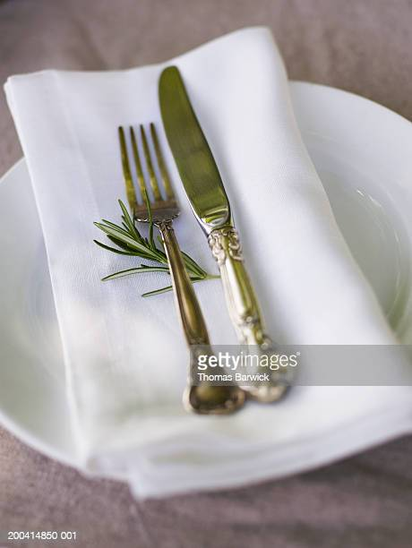 Fork, knife, sprig of rosemary and napkin atop plate, elevated view