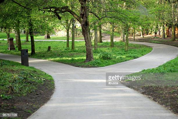 Forked road in St. James Gardens, Liverpool