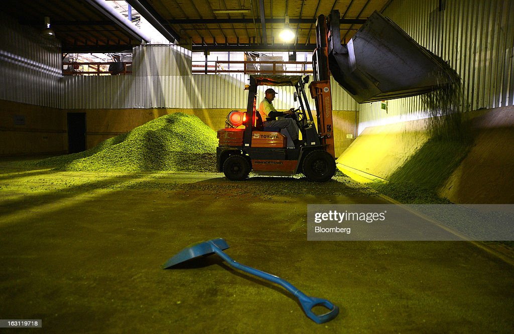 A forklift bucket scoops dried hops onto a conveyor belt at Hops Products Australia's operations in Bushy Park, Tasmania, Australia, on Tuesday, Feb. 26, 2013. Australia's Bureau of Statistics is scheduled to release fourth-quarter gross domestic product figures on March 6. Photographer: Carla Gottgens/Bloomberg via Getty Images