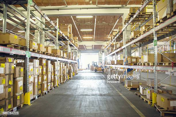 Forklift trucks and drivers working in distribution warehouse aisle