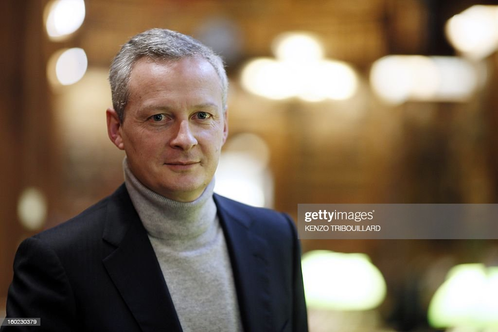 Former Agriculture minister and UMP right-wing opposition party MP Bruno Le Maire poses on January 28, 2013, in the librairy of the National Assembly in Paris.