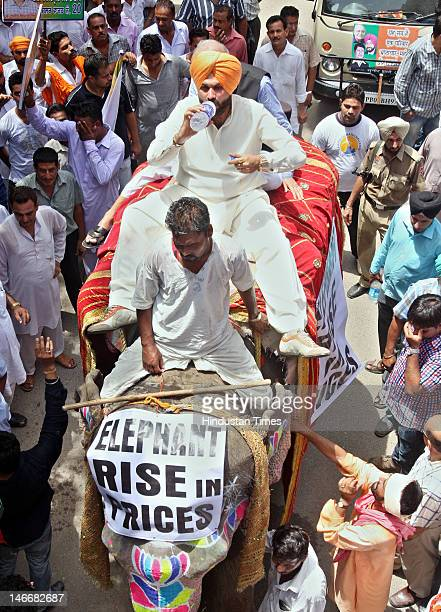 Former Cricketer and BJP MP from Amritsar Navjot Singh Sidhu leads the protest march on an elephant on June 22 2012 in Amritsar India BJP workers...