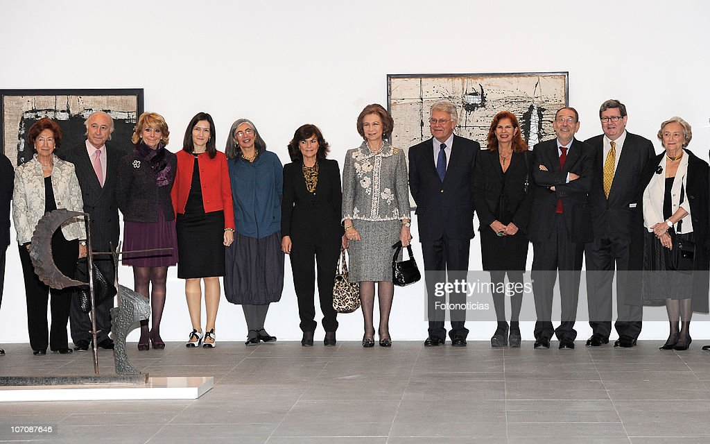 Queen Sofia of Spain attends 'Museo Reina Sofia' 20th Anniversary