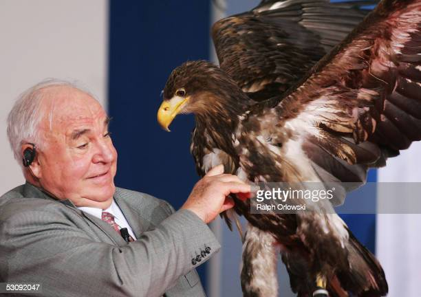Former German Chancellor Helmut Kohl holds an eagle during the 'Point Alpha Prize' ceremony on June 17 2005 in Geisa near Fulda Germany Former...