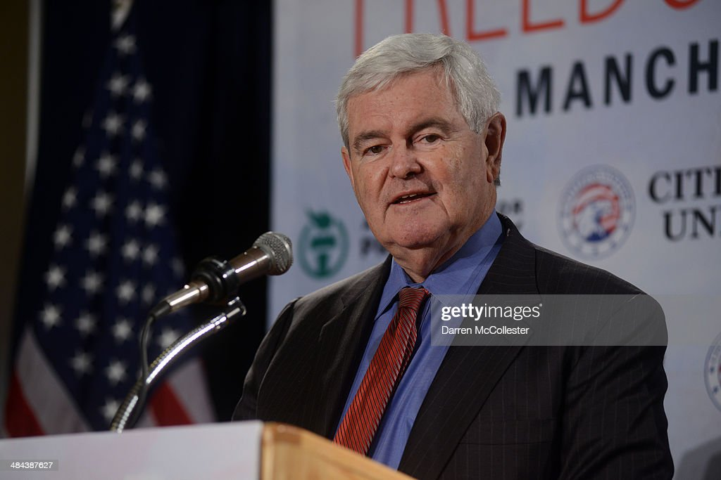 Former House Speaker Newt Gingrich speaks at the Freedom Summit at The Executive Court Banquet Facility April 12, 2014 in Manchester, New Hampshire. The Freedom Summit held its inaugural event where national conservative leaders bring together grassroots activists on the eve of tax day. Photo by Darren McCollester/Getty Images)