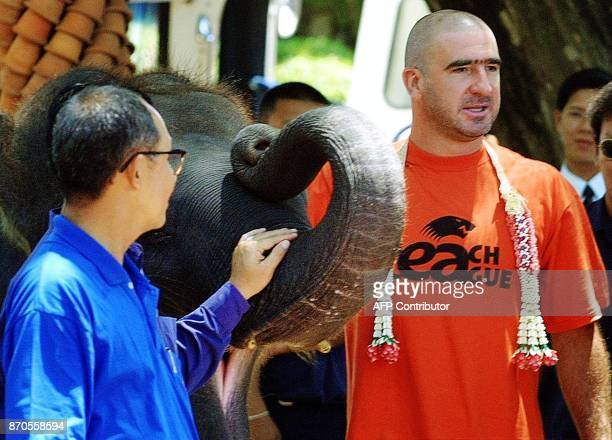 Former Manchester United football player Eric Cantona poses for photos with an elephant at Nong Nooch Tropical Garden in Chonburi province on 09 May...