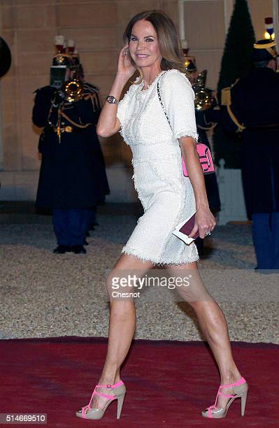 Former model Rosalie van Breemen arrives to attend a state dinner with French President Francois Hollande Queen Maxima of the Netherlands and King...