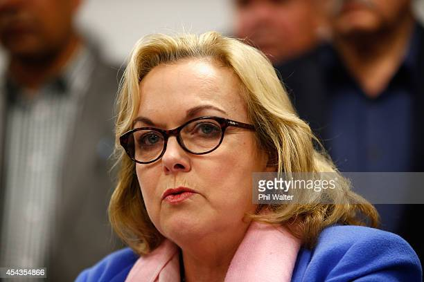 Former National Party MP Judith Collins makes a statement to media following her resignation on August 30 2014 in Auckland New Zealand Information...