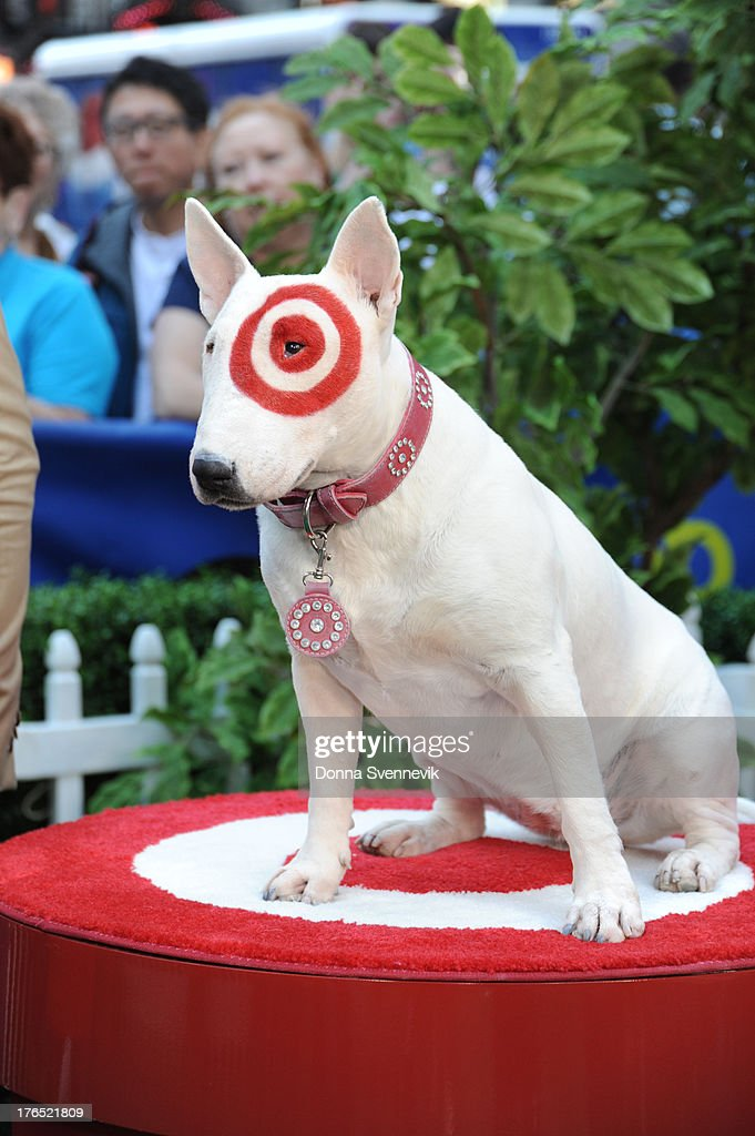 AMERICA - Former NFL player Donald Driver and Bullseye, the official mascot of Target, appear on 'Good Morning America,' 8/13/13, airing on the ABC Television Network. BULLSEYE