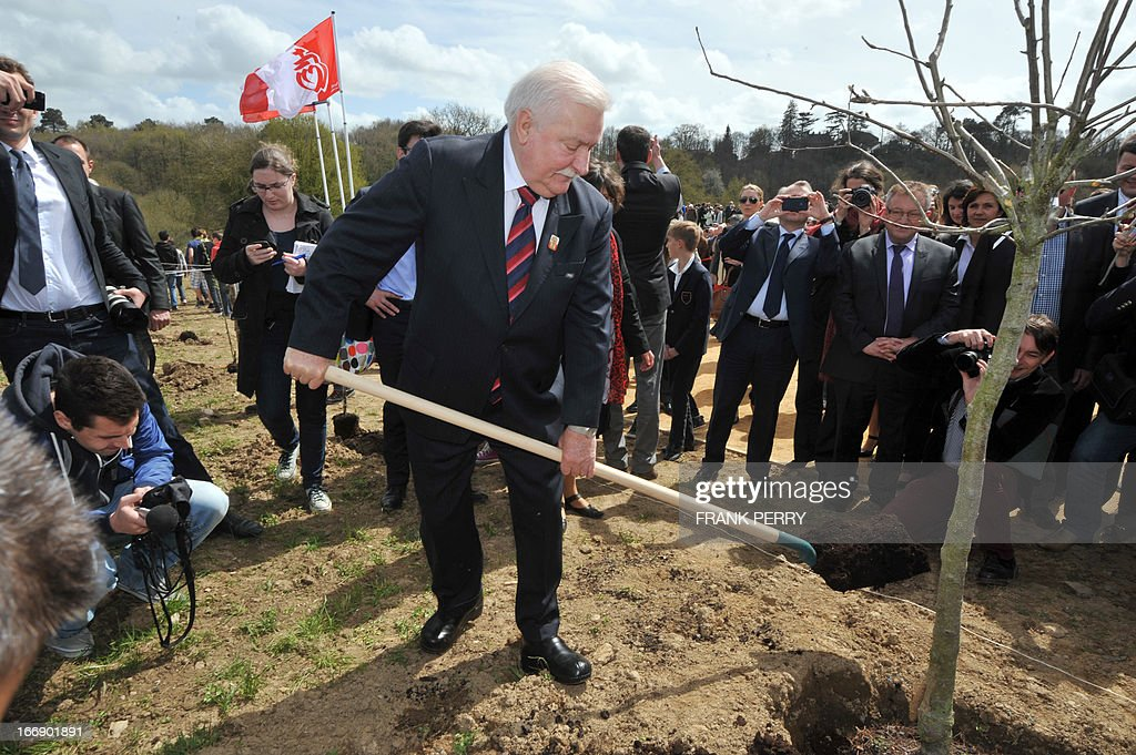Former Poland president Lech Walesa plants a tree during the commemoration of the 220th anniversary of the outbreak of the royalist rebellion and counterrevolution in Vendee during the French Revolution, on April 18, 2013 in Lucs-sur-Boulogne. AFP PHOTO / FRANK PERRY