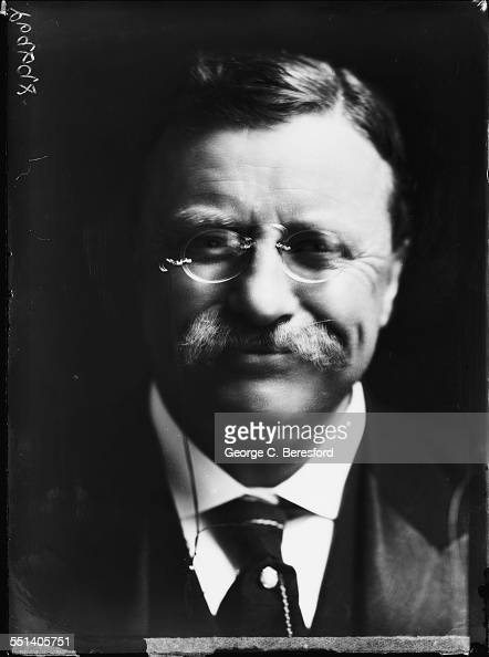 a biography of theodore roosevelt a former us president (he remains the only us president to pardon a former  what do any of us  brinkley is a respected author and history professor so i am hopeful this biography.