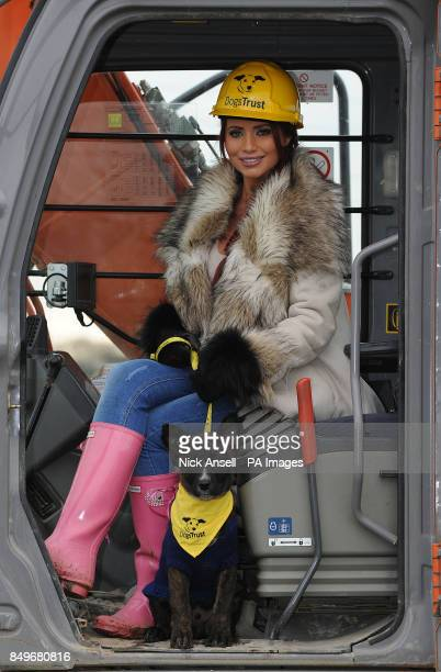 Former reality television personality Amy Childs sits in a digger cab with rescue dog Basil during the 'first dig' at the new Dogs Trust Essex...