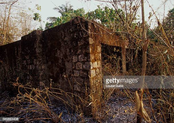 Former school buildings deserted after carbon dioxide gas came through and killed two thousand people in 1986 sit overgrown with foliage