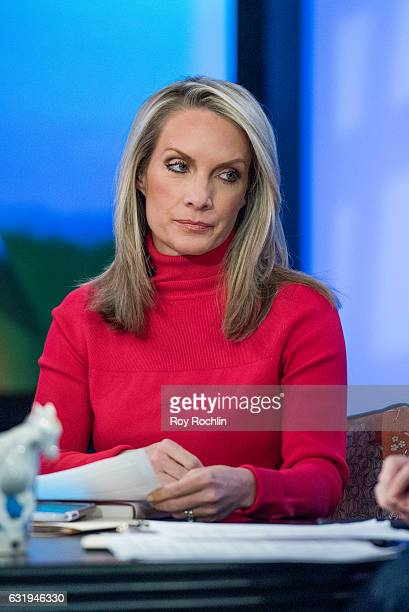 Not celebrity dana perino