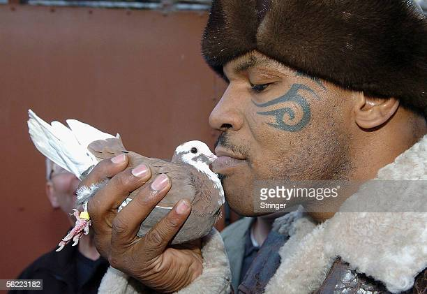Former world heavyweight boxing champion Mike Tyson meets up with a pigeon fancier Horace Potts of Bloxwich Walsall West Midlands on November 18 2005...