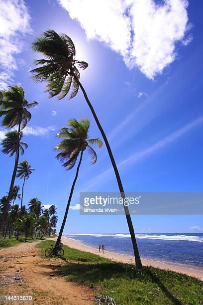 Forte Beach