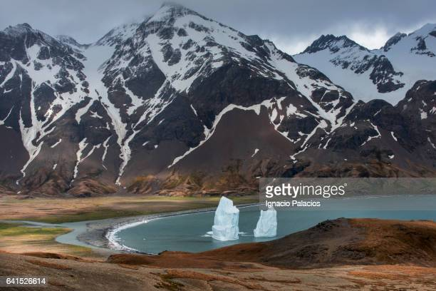 Fortuna Bay to Stromness walk, icebergs