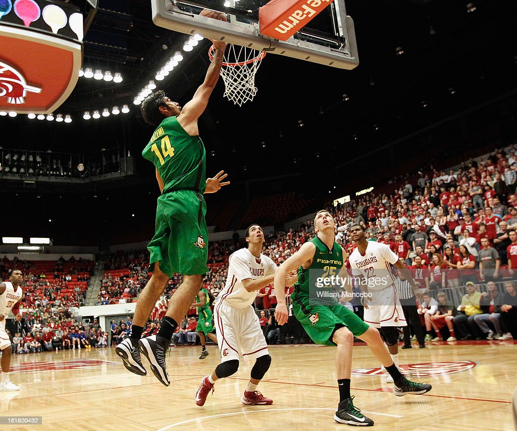 Forward Arsalan Kazemi #14 of the Oregon Ducks attempts to score a goal against the Washington State Cougars during the game at Beasley Coliseum on February 16, 2013 in Pullman, Washington.