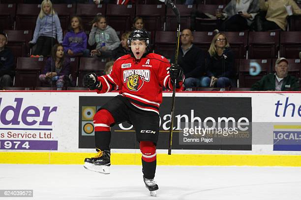 Forward Petrus Palmu of the Owen Sound Attack celebrates his gamewinning overtime goal against the Windsor Spitfires to make it 32 for Owen Sound on...