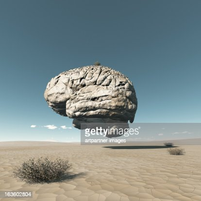 A fossilized Brain in a dried out desert