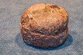 Fossilized egg of a Hadrosaurus or duckbilled dinosaur